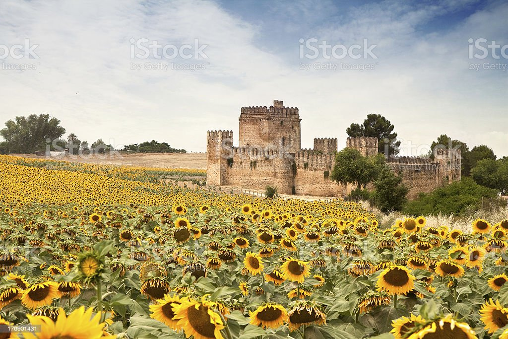 Spanish Castle with Sun Flowers royalty-free stock photo