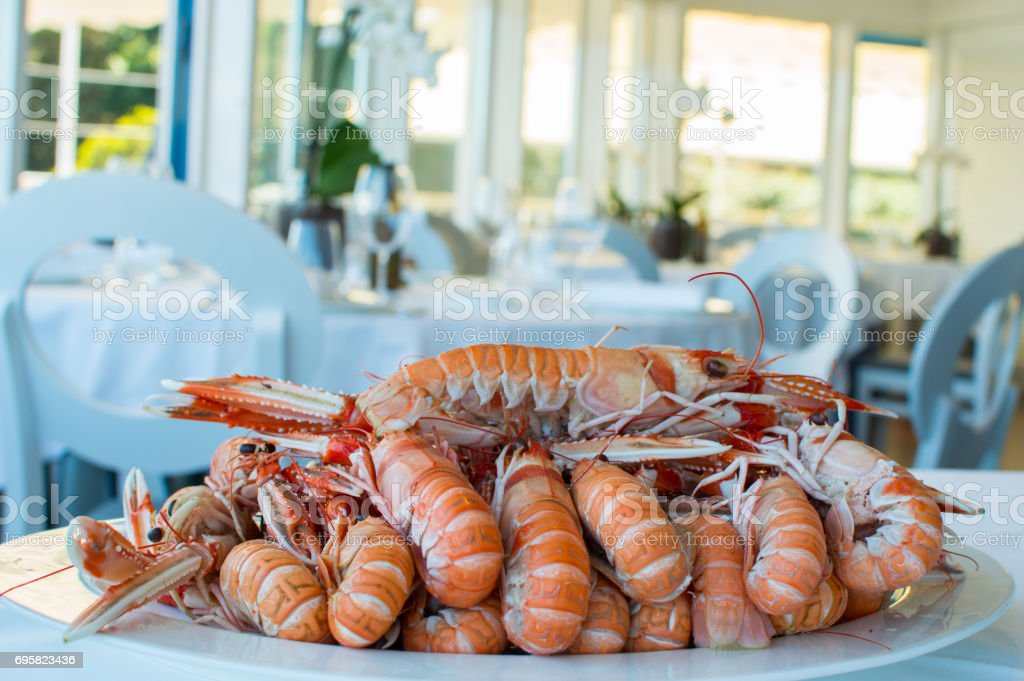 Spanish Crayfish stock photo