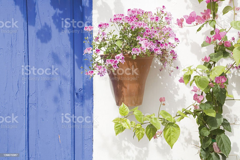 Spanish flowers royalty-free stock photo