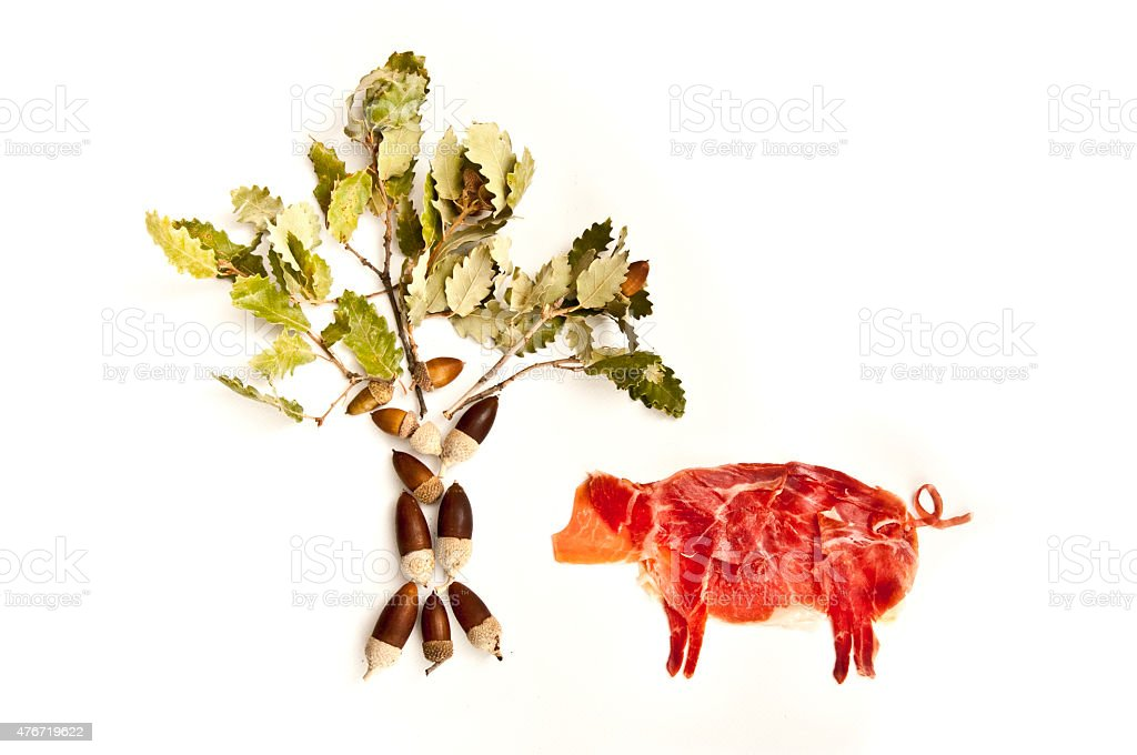 Spanish ham stock photo