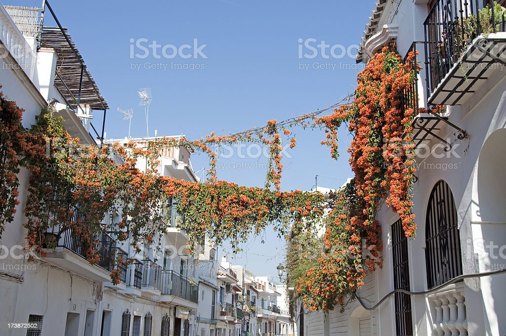 Spanish Homes and Flowering Vines royalty-free stock photo