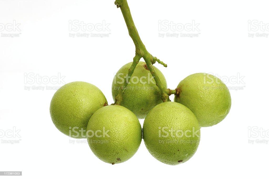 spanish lime (mamoncillo,genip) stock photo