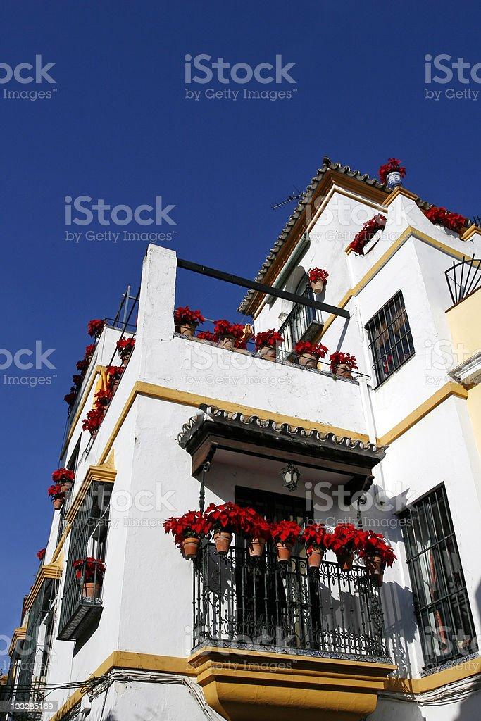 Spanish Poinsettia House royalty-free stock photo