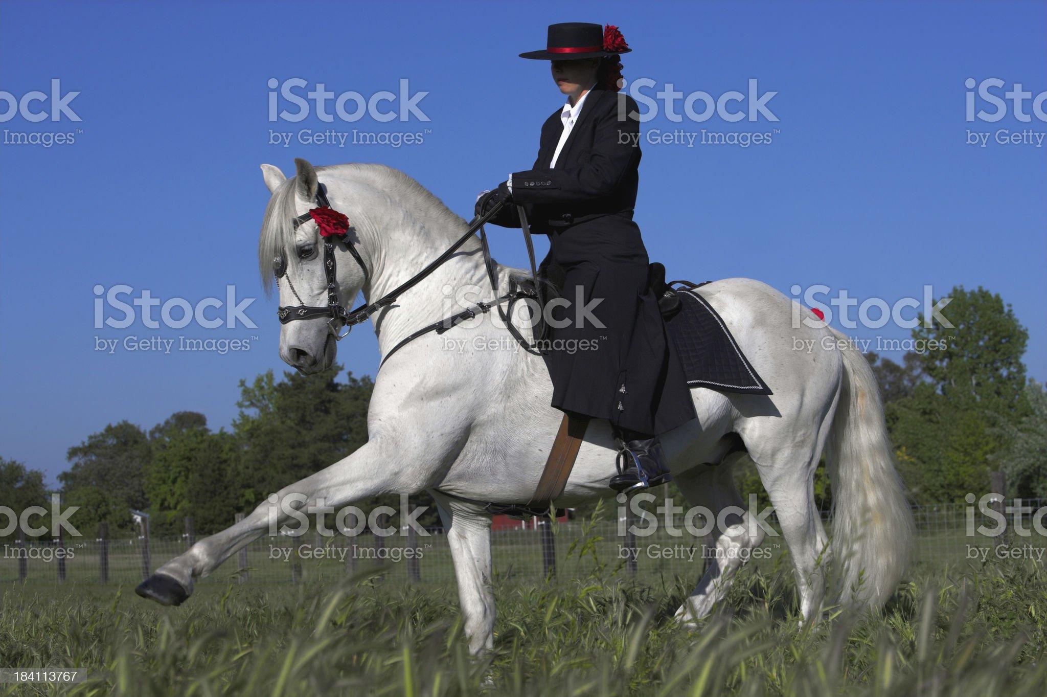 Spanish Walk royalty-free stock photo