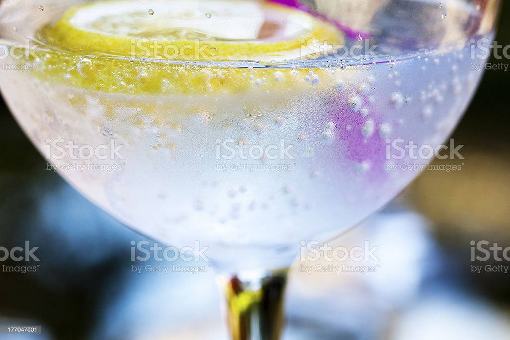 Sparkling gin and tonic royalty-free stock photo