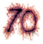 Sparkling red celebration number seventy 70th birthday