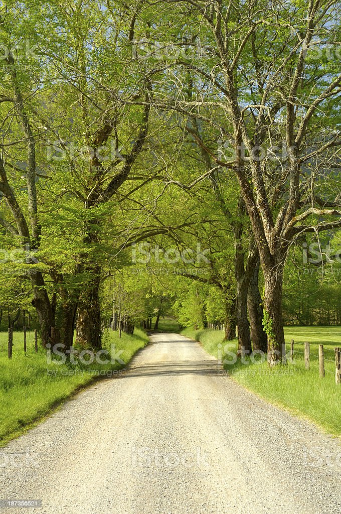 Sparks Lane in the Great Smoky Mountains stock photo