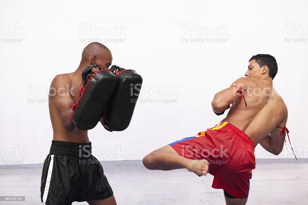 Sparring to keep their reflexes sharp royalty-free stock photo