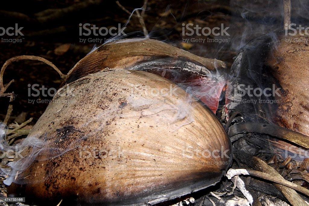 Spathe of coconut with smoke stock photo