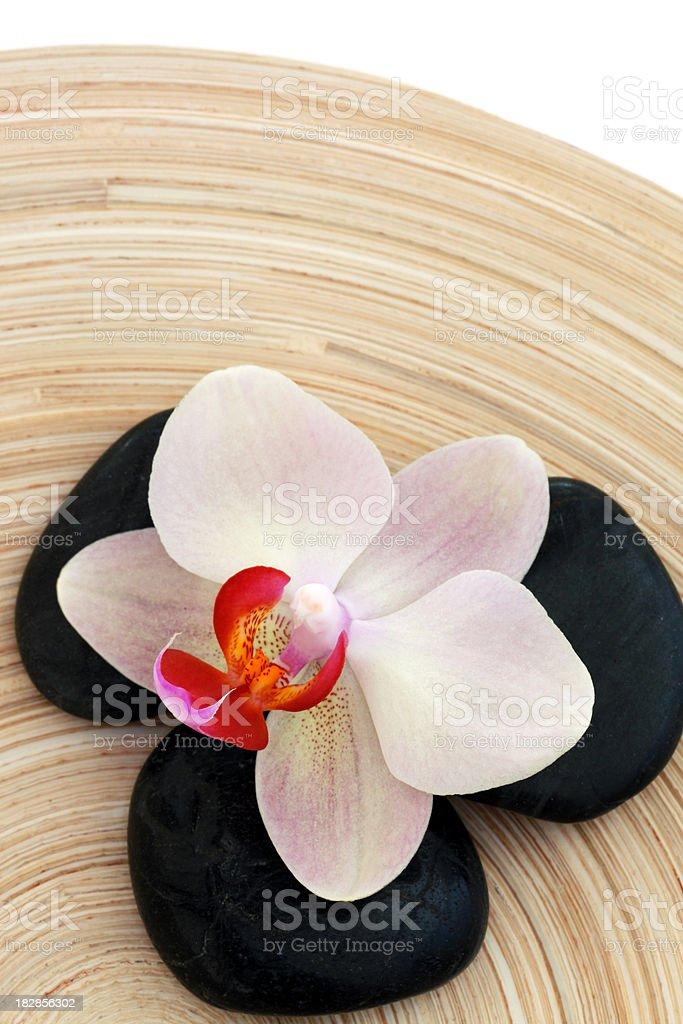 SPA/Wellness - Orchid on Bamboo Plate royalty-free stock photo
