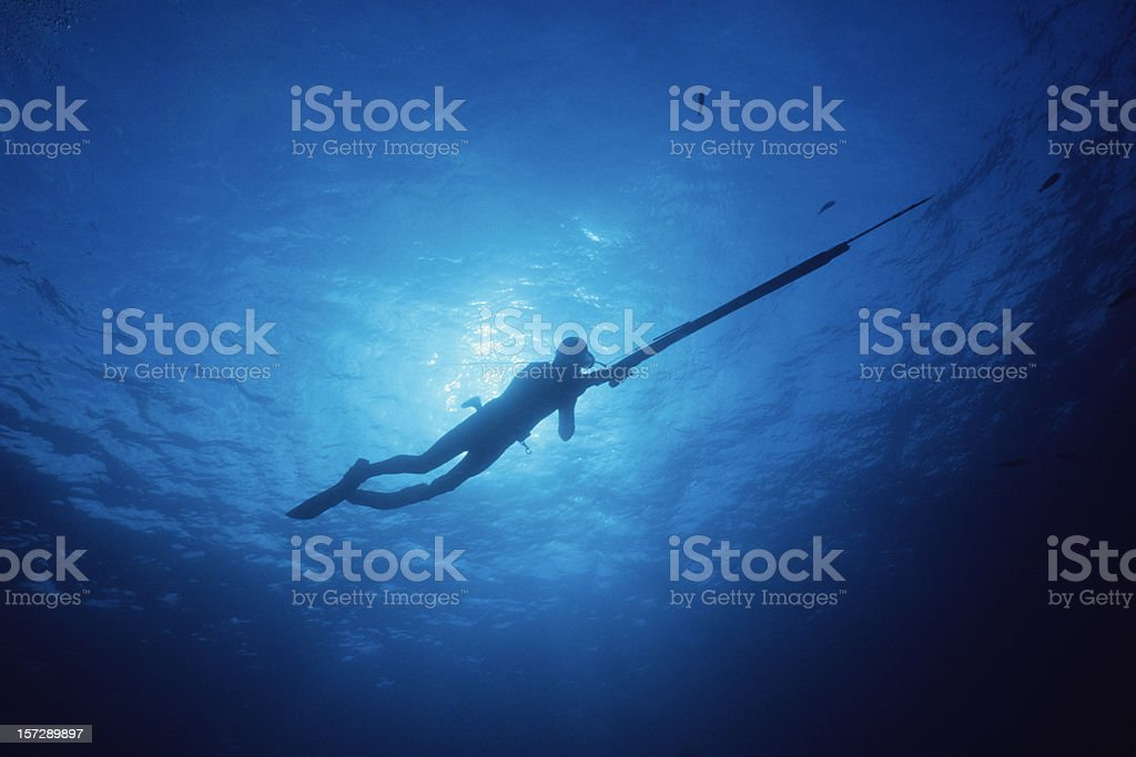 Spear Fisherman in Blue Water stock photo