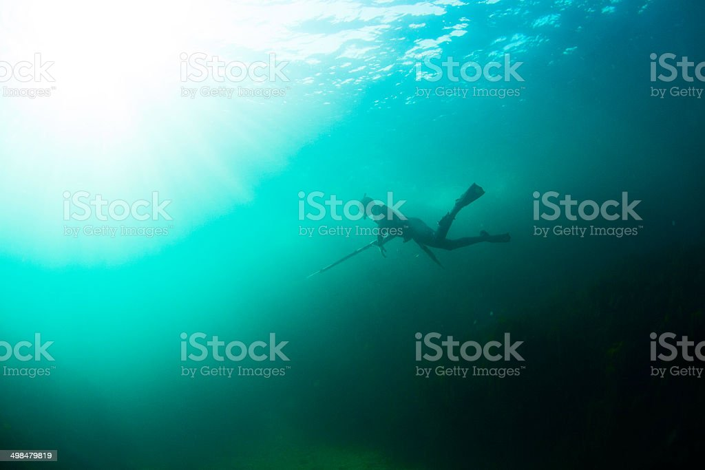 Spear Fisherman stock photo