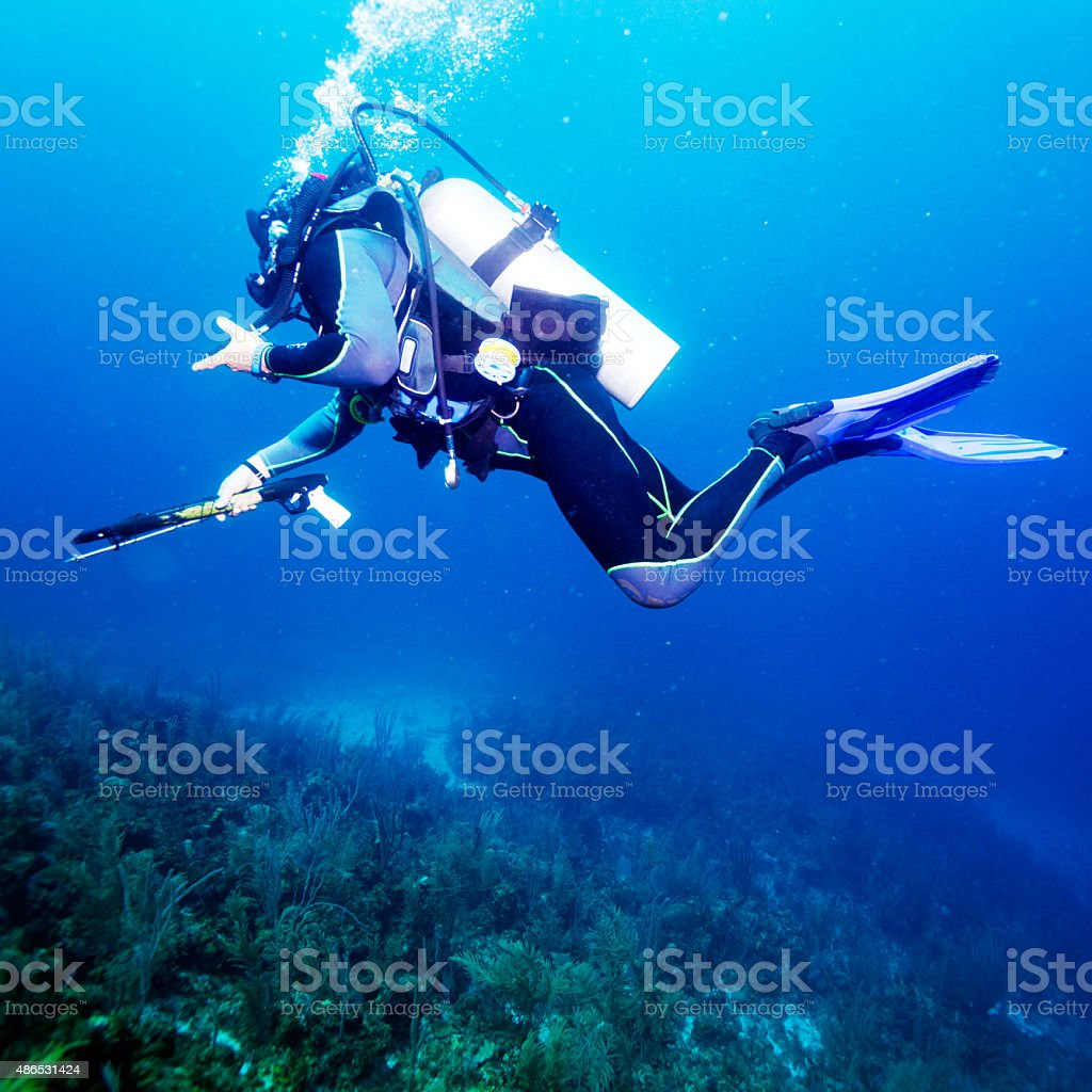 Spear fisherman with speargun near Bottom stock photo
