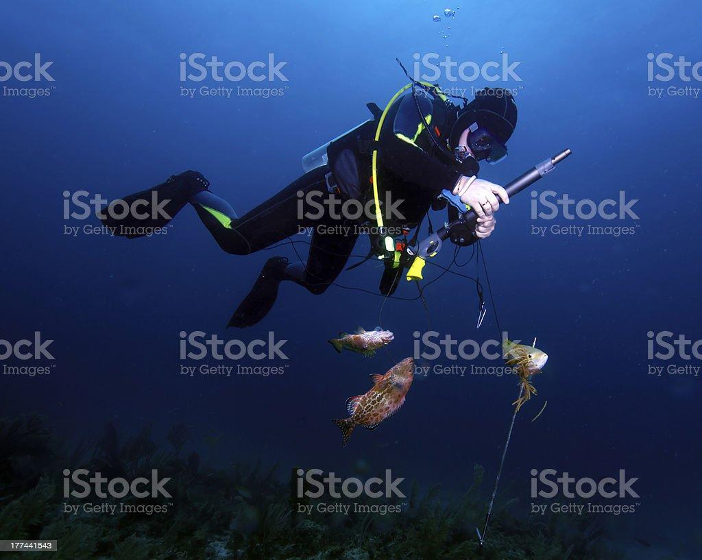 стрелять в рыбак