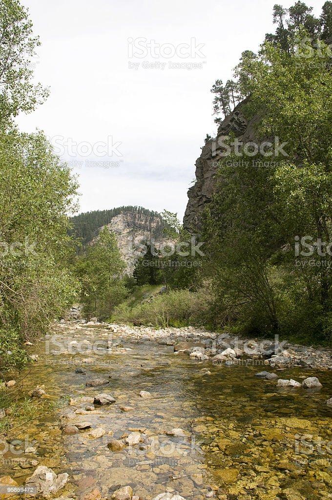 Spearfish Canyon in South Dakota royalty-free stock photo