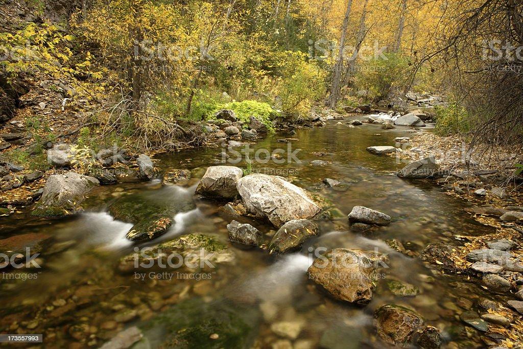 Spearfish Creek stock photo