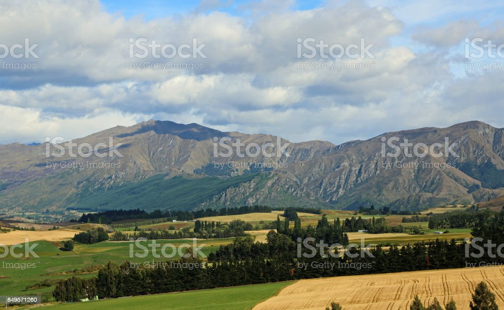 Speargrass Flat stock photo