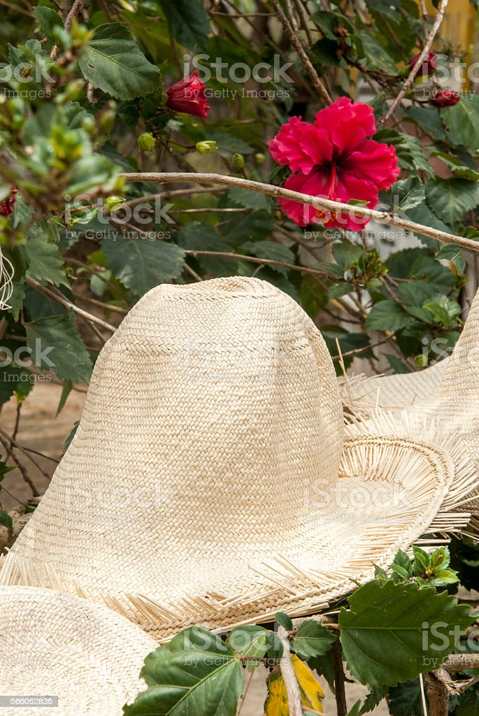 Special Display Of Straw Hats stock photo