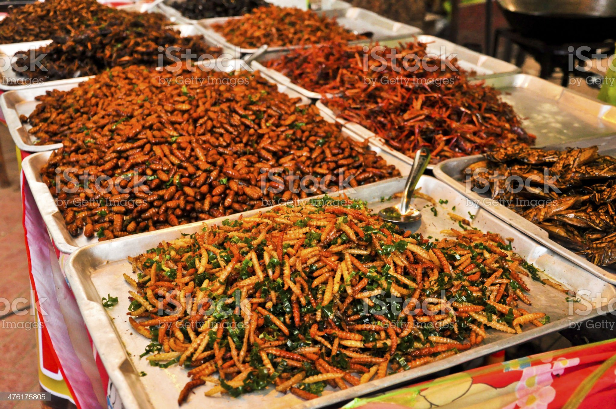 Special food,Fried silk worm and grasshoppers in  market,thailand royalty-free stock photo