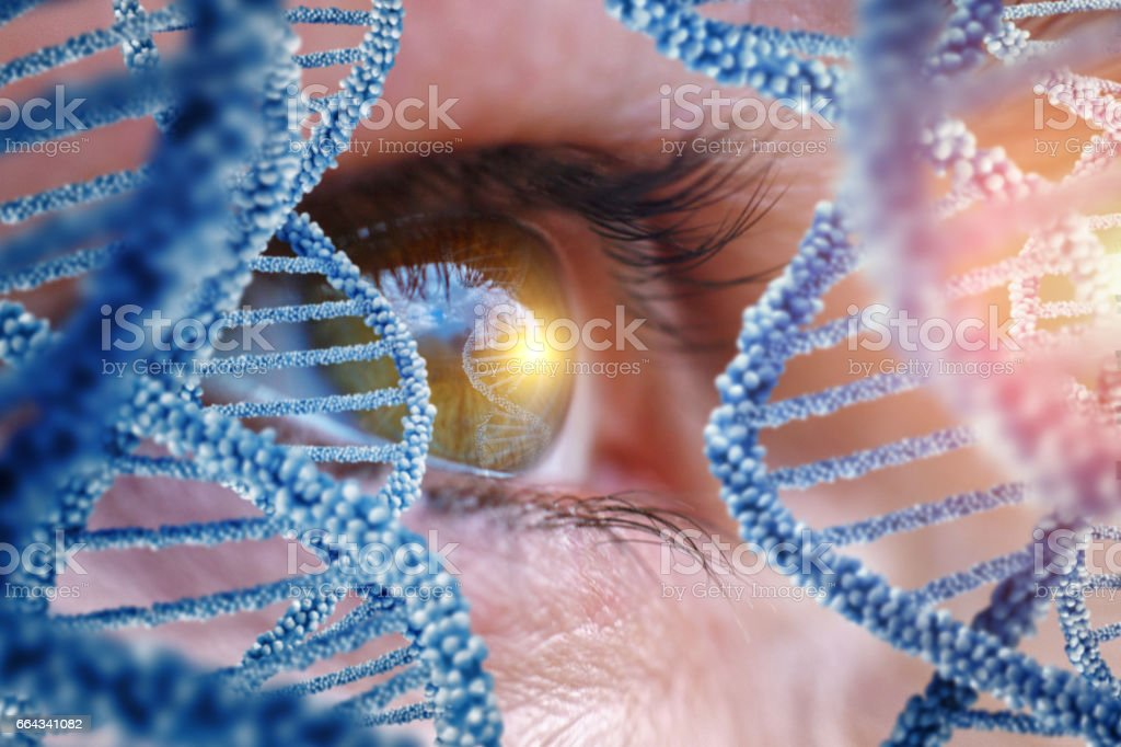 Specialist oversees the DNA. stock photo