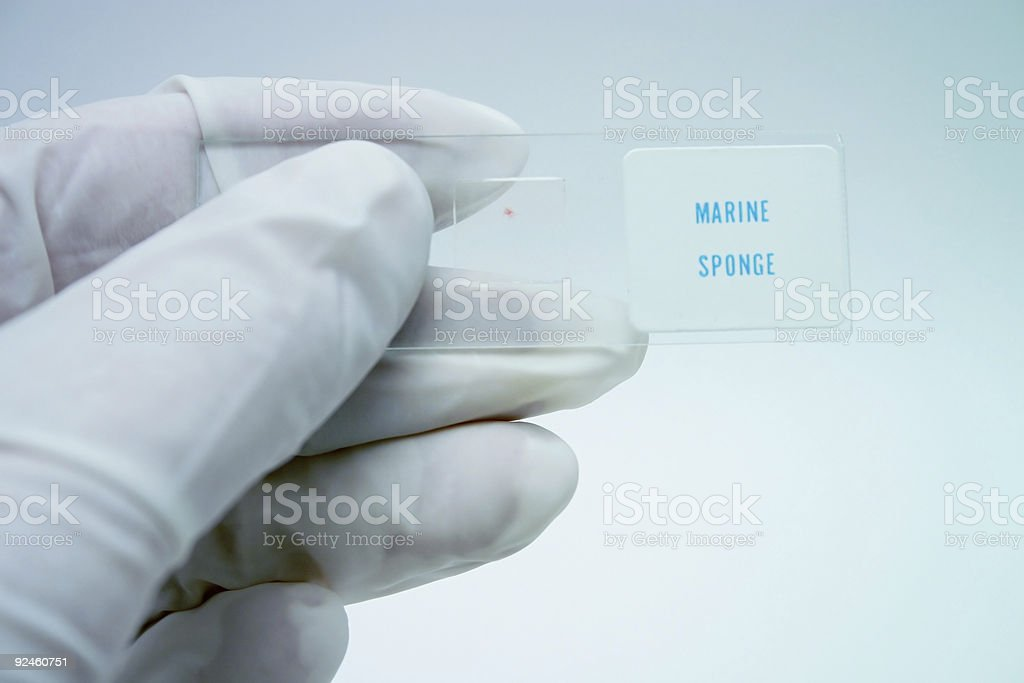 Specimen royalty-free stock photo