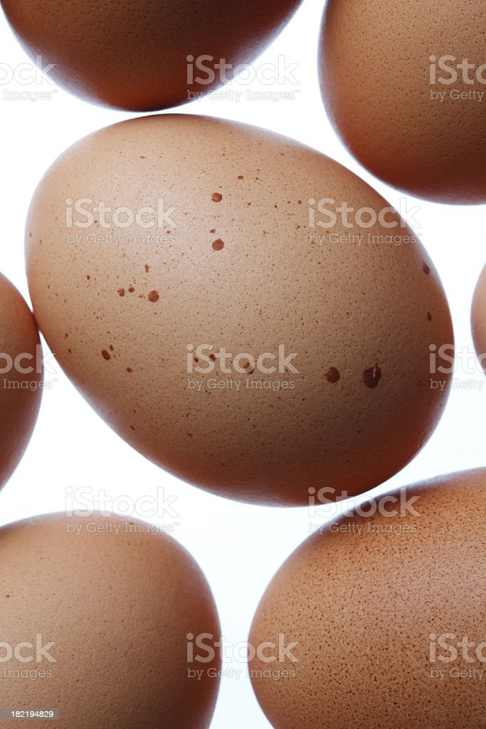 Speckled brown egg stock photo