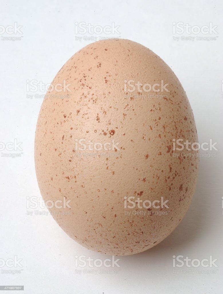 Speckled egg stock photo