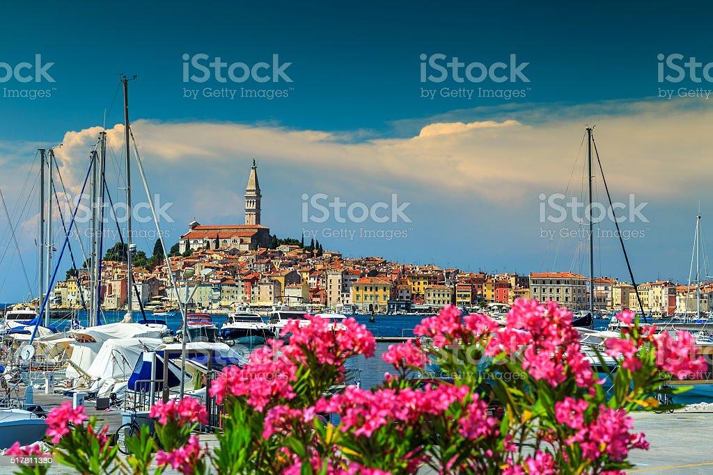 Spectacular cityscape with Rovinj old town,Istria region,Croatia,Europe stock photo