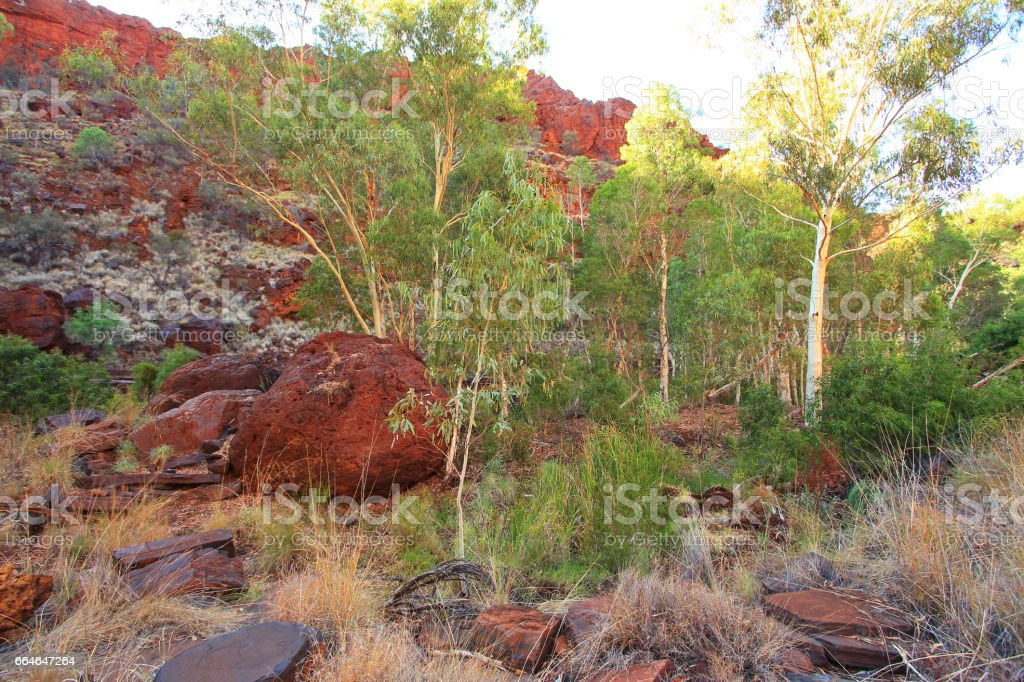 Spectacular landscape of Western Australian Karijini National Park stock photo