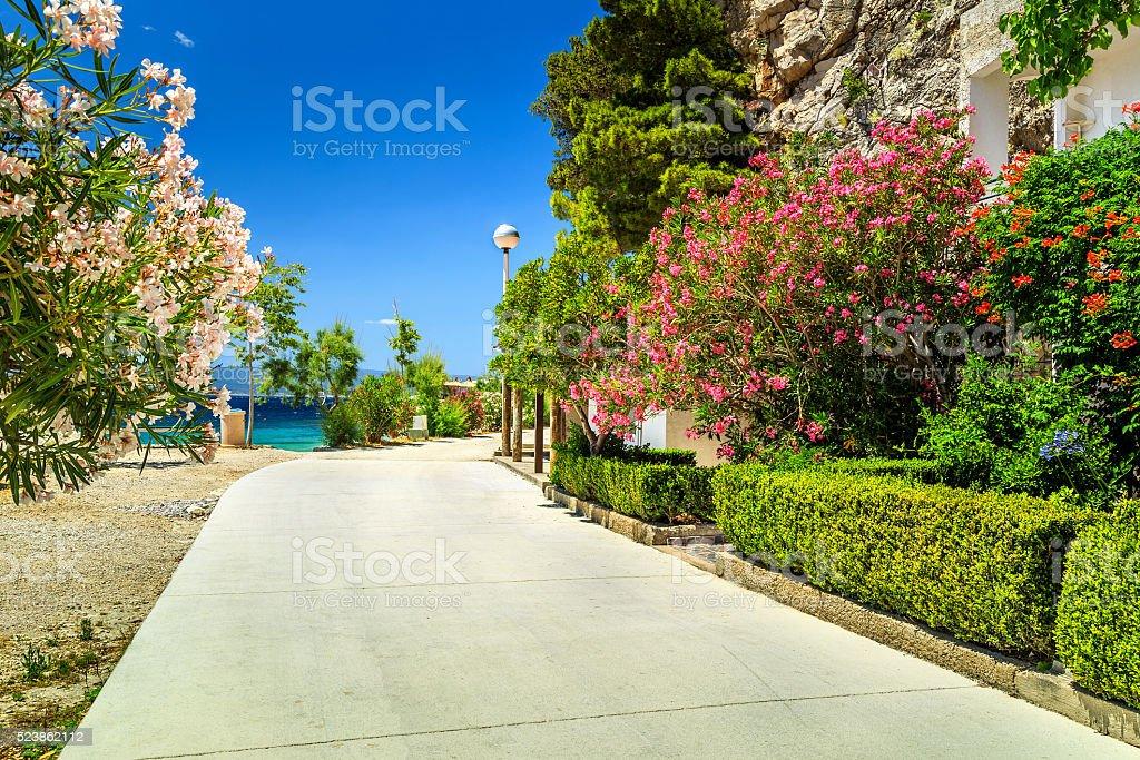 Spectacular mediterranean street near majestic beach,Brela,Croatia,Europe stock photo