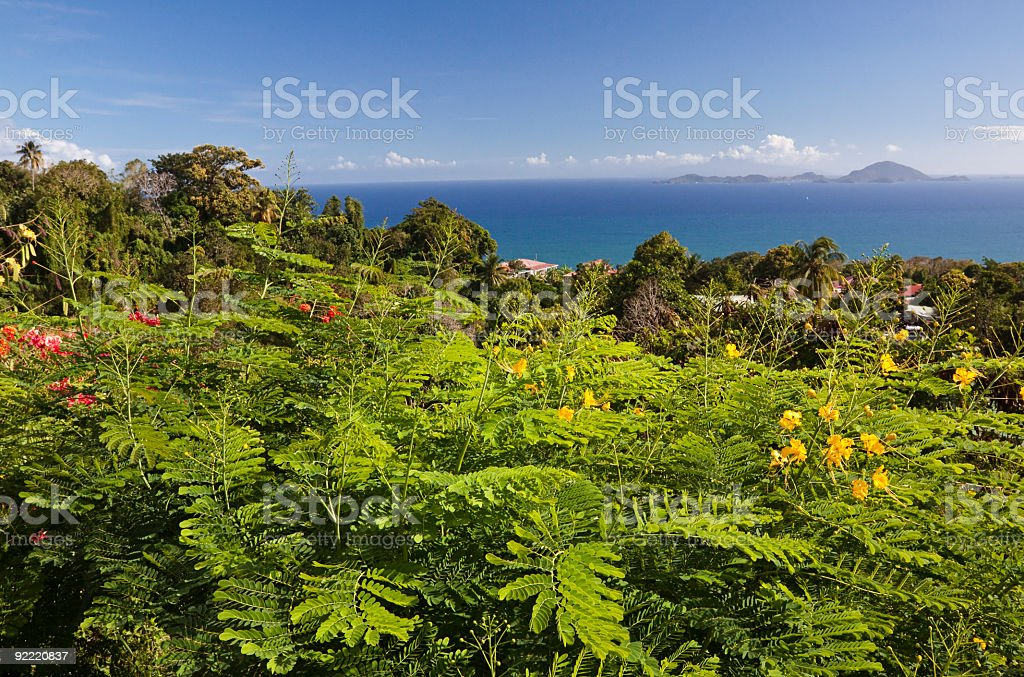 A spectacular view of the Caribbean Island of Guadeloupe stock photo