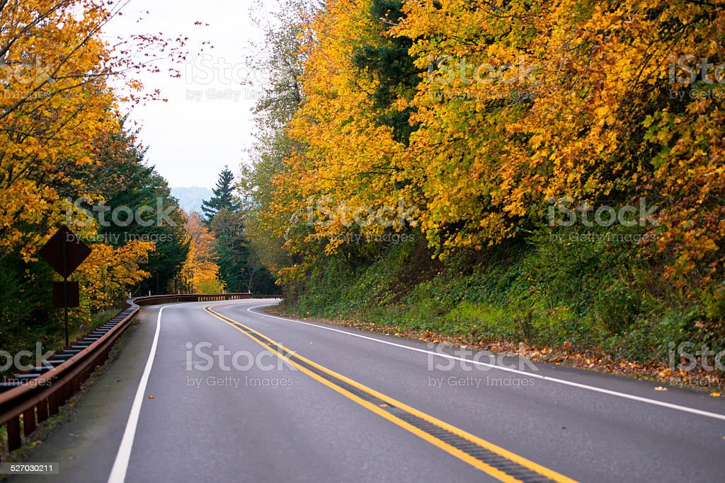 Spectacular winding road with yellow autumn trees stock photo