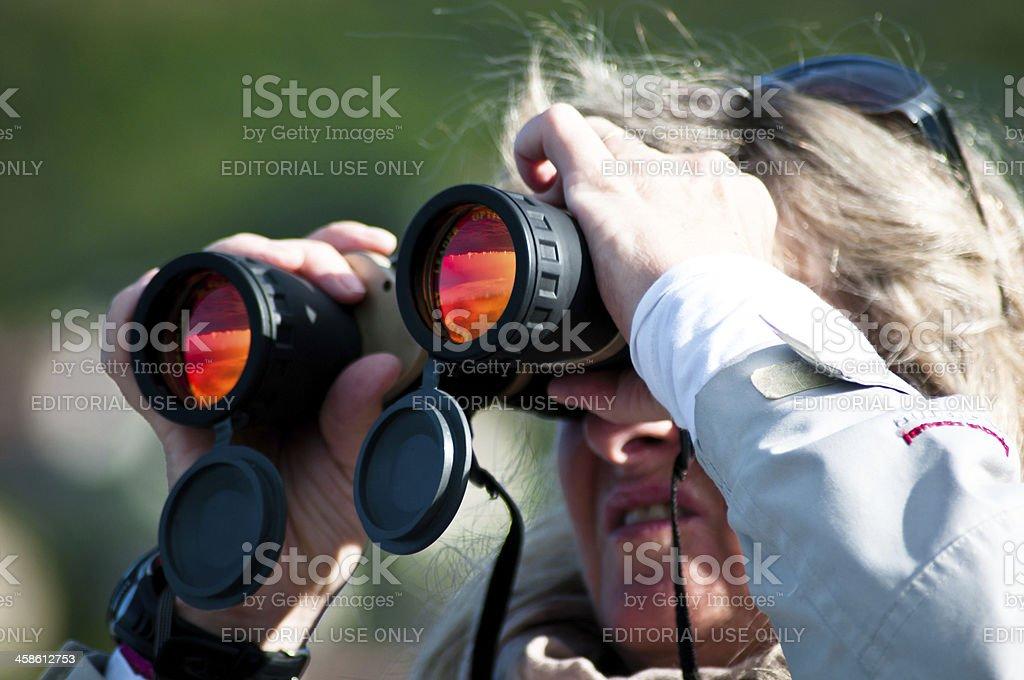 Spectator watching regatta royalty-free stock photo
