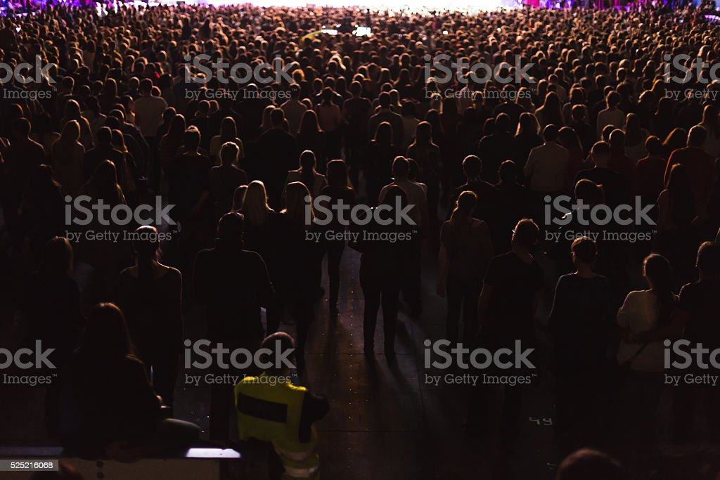 Spectators in the large concert hall. stock photo