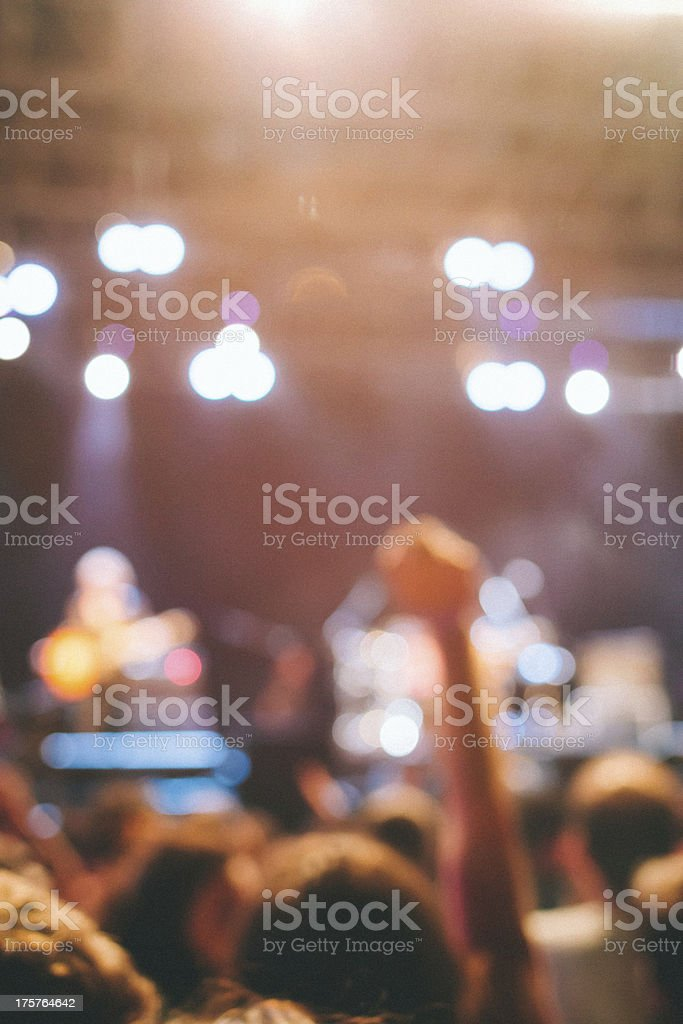 Spectators of a Music Concert royalty-free stock photo