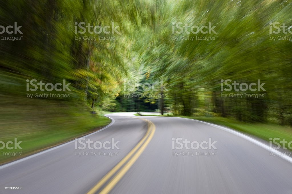 Speed Blur Through The Forest royalty-free stock photo
