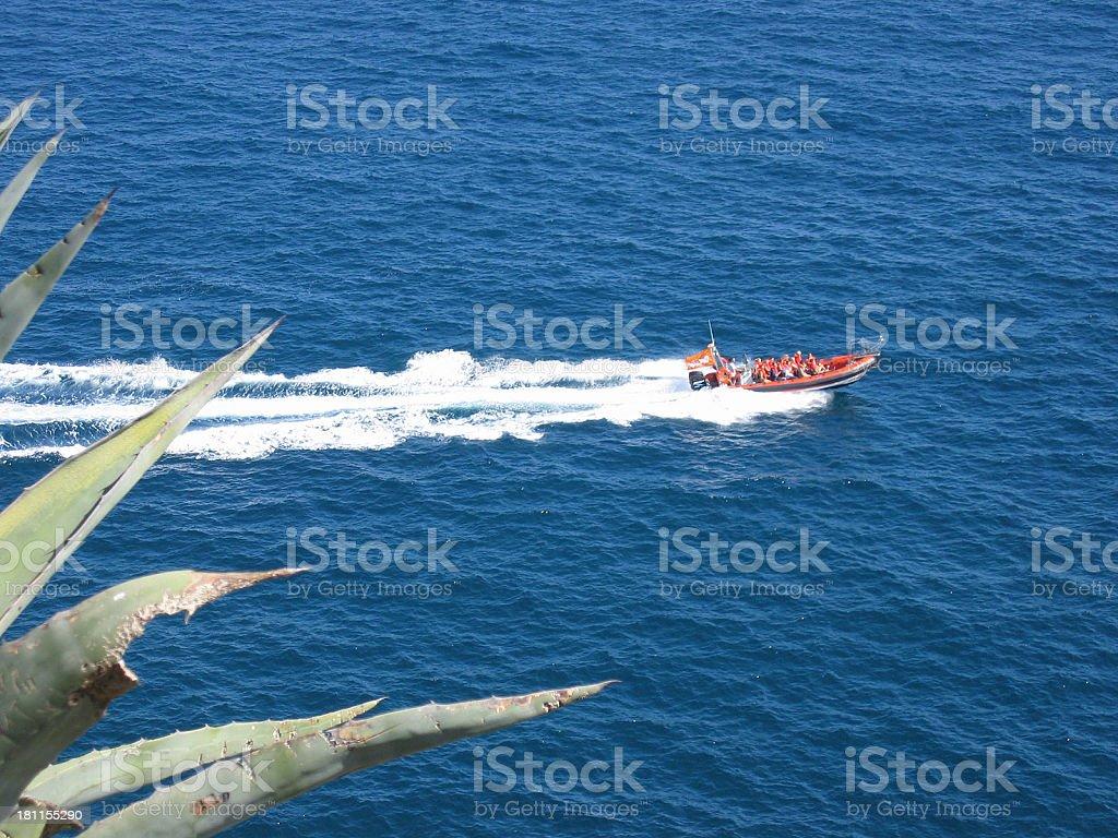 Speedboat cruise royalty-free stock photo