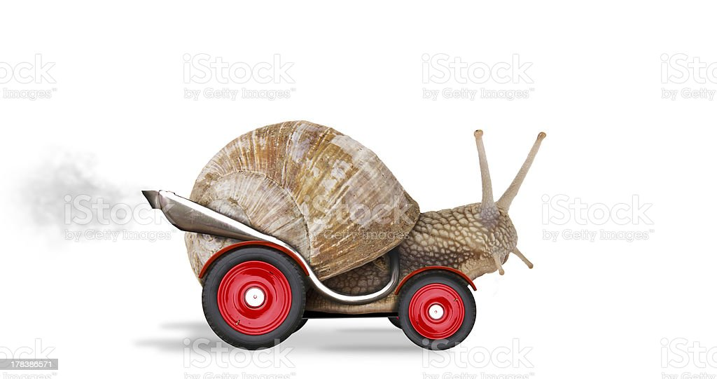 Speedy snail stock photo