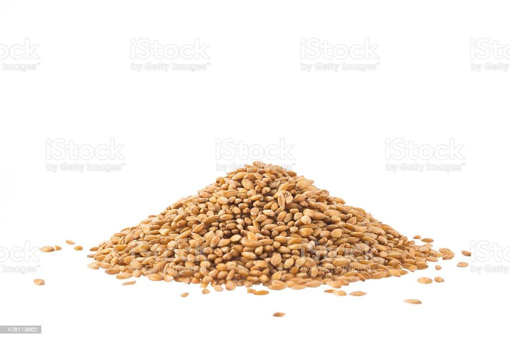 Spelt heap isolated on white stock photo