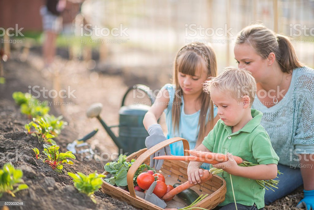 Spending Time in the Garden on Mother's Day stock photo