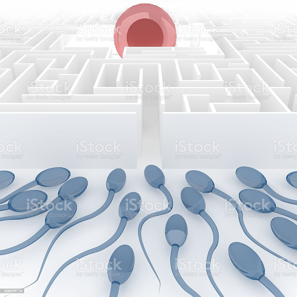 sperm and egg in endless maze stock photo
