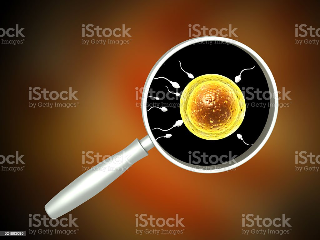 Spermatozoons, floating to ovule stock photo