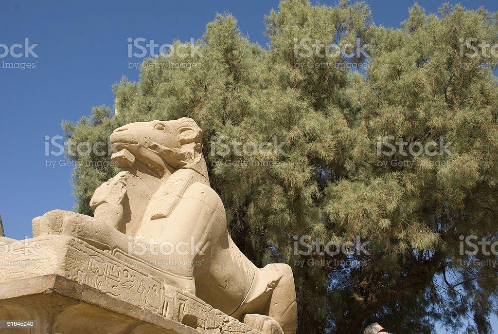 Sphenks at Karnak Temple Luxor Egypr stock photo