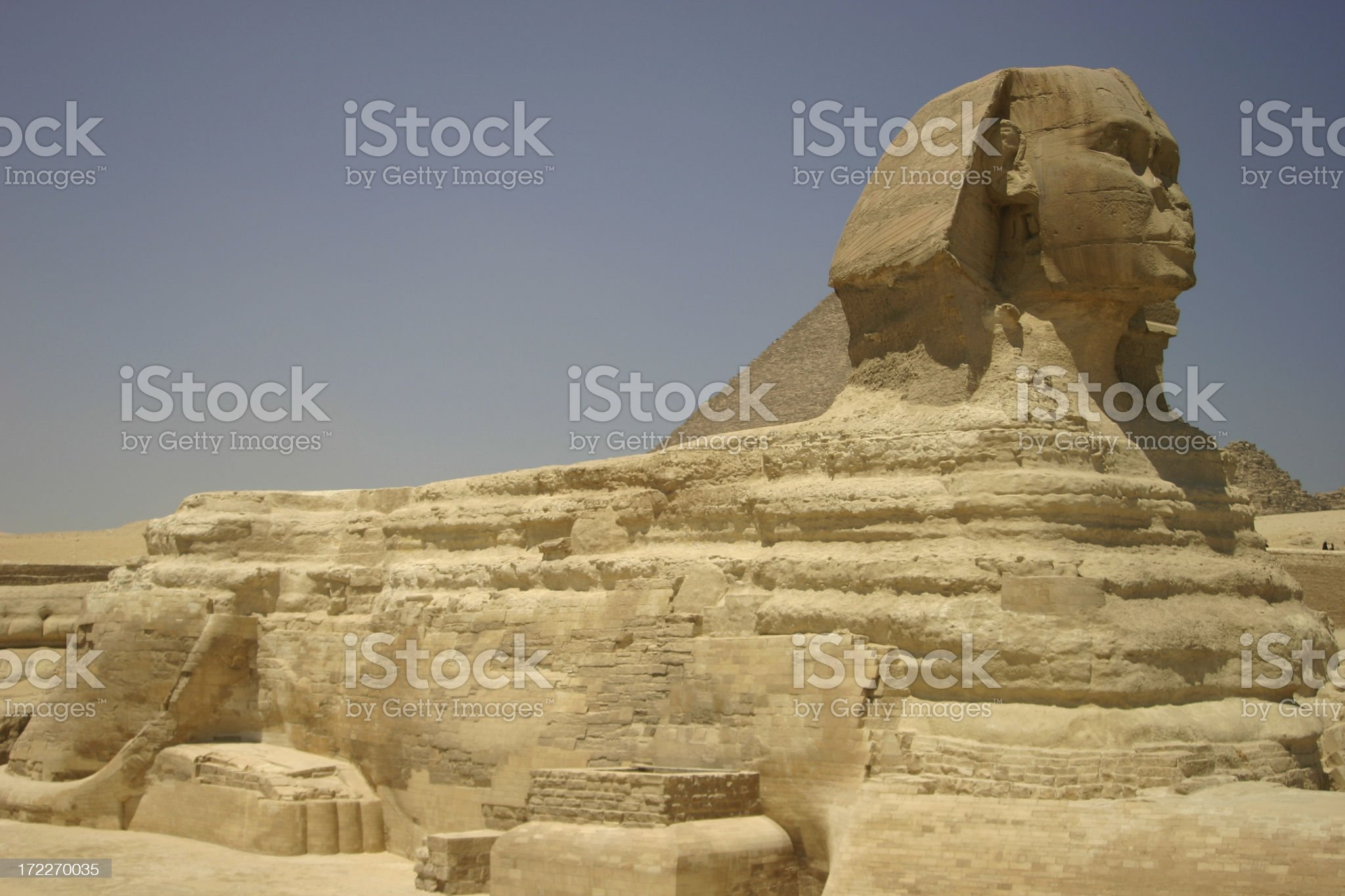 Sphinx in Cairo royalty-free stock photo