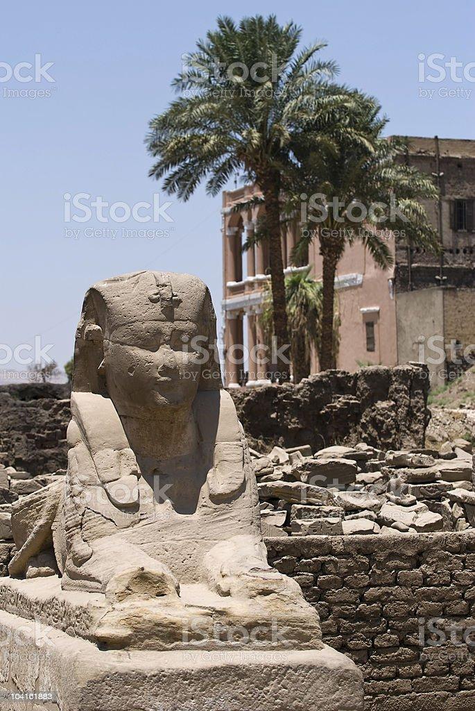 Sphinx's in Luxor  city stock photo