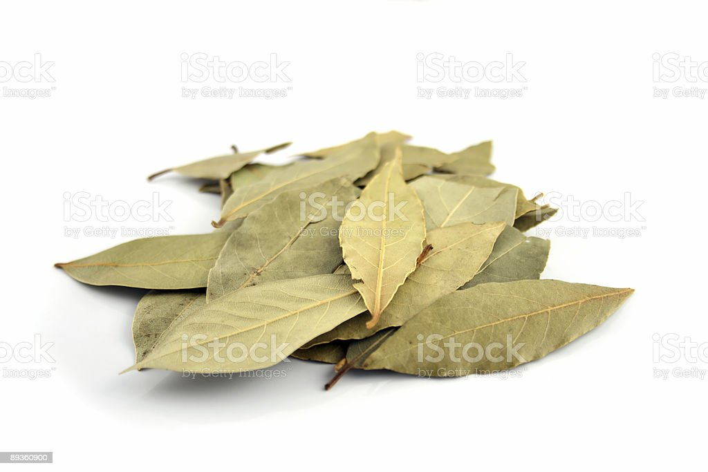 Spice - Bay Leaves royalty-free stock photo