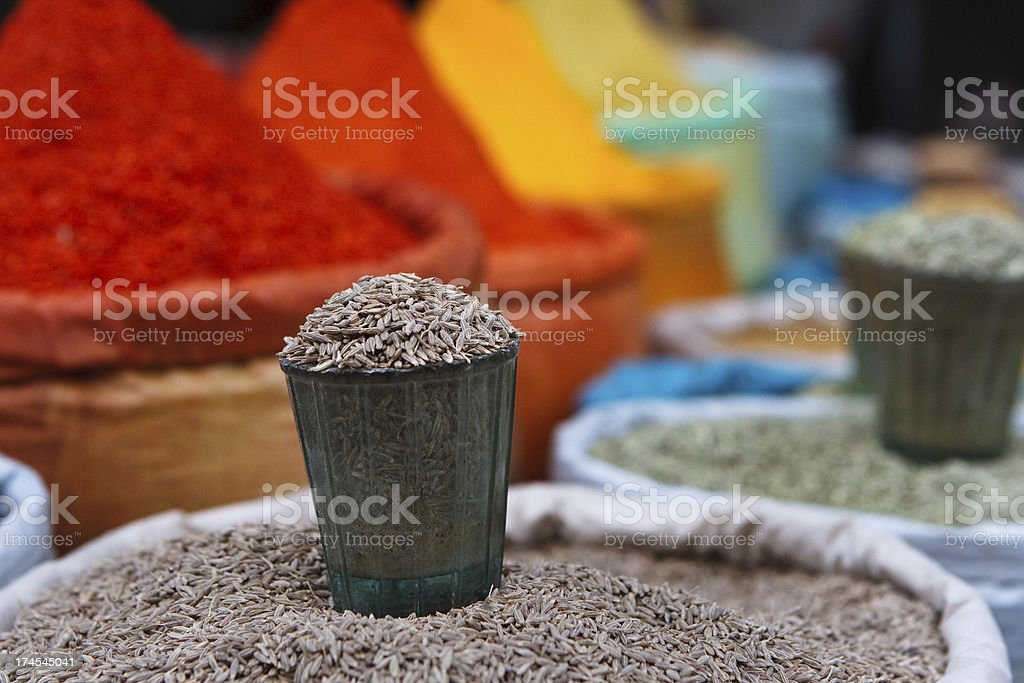Spice market in Delhi royalty-free stock photo
