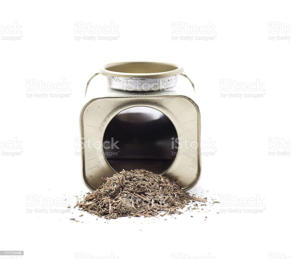 spice mint royalty-free stock photo