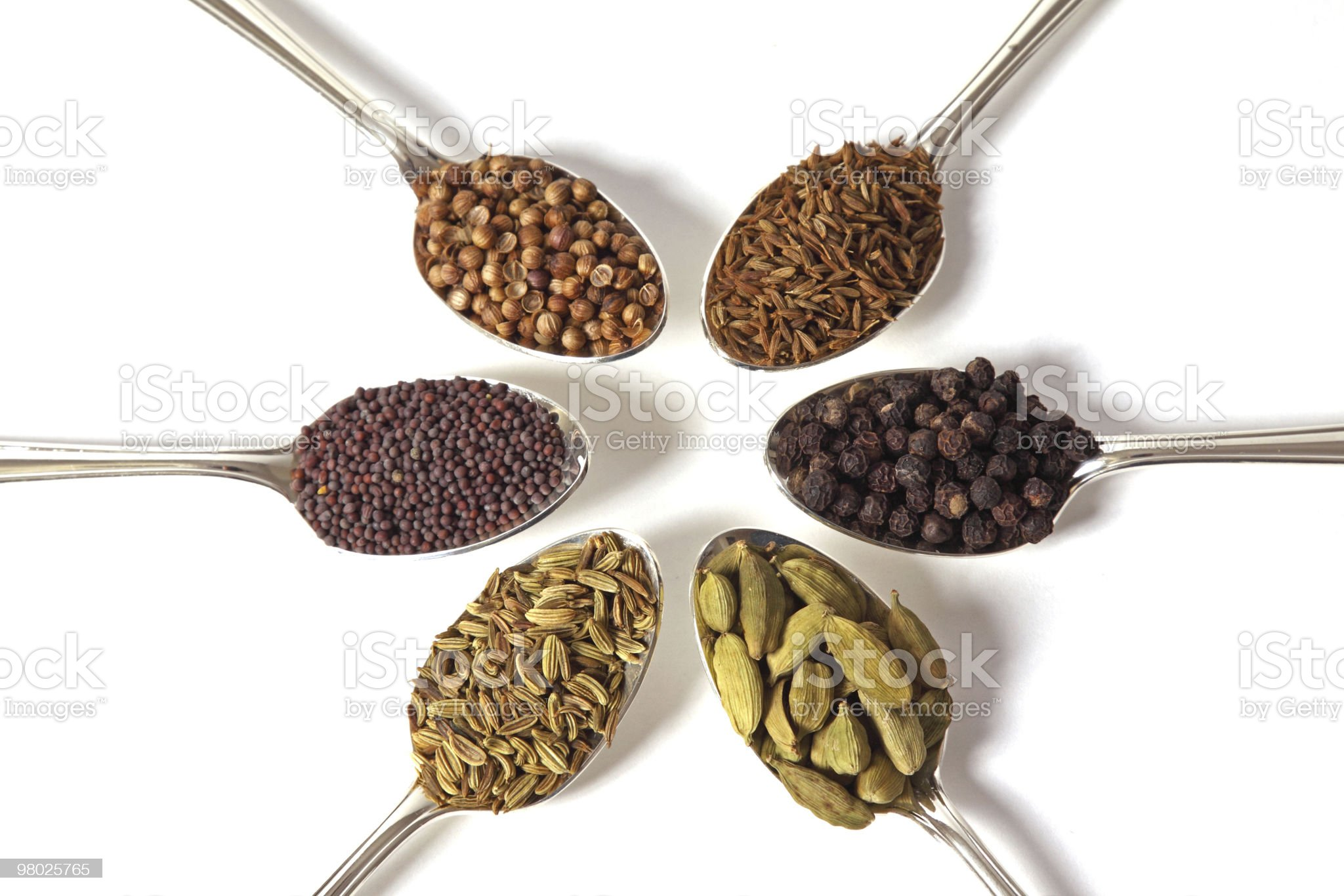 Spice Spoons royalty-free stock photo