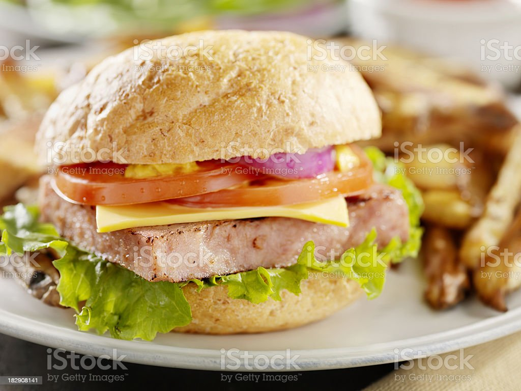 Spiced Ham Burger with French Fries stock photo